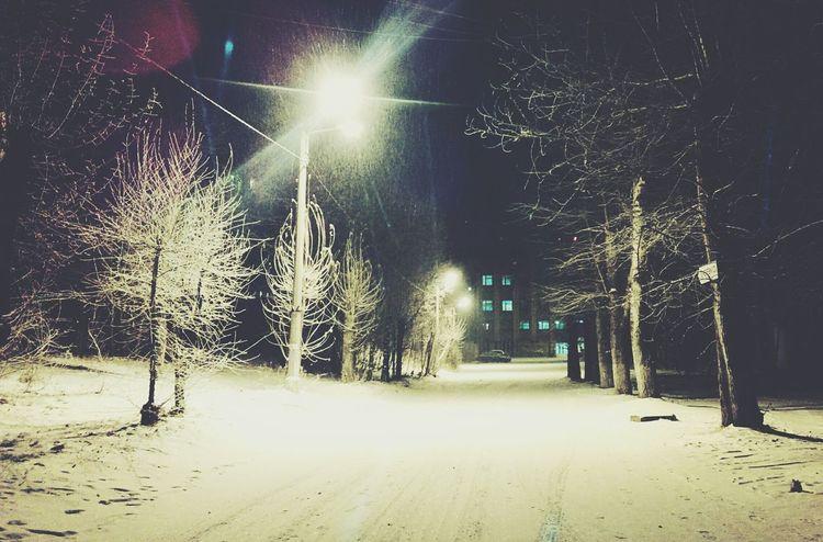 Borisova Winter