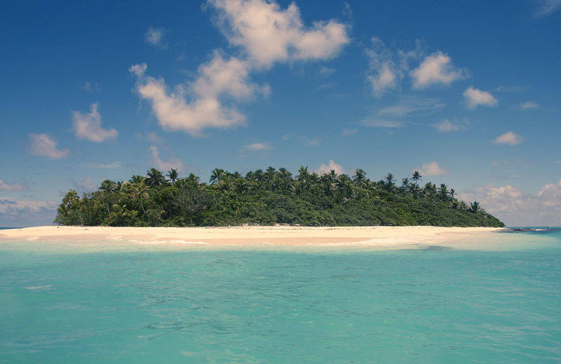 Beach at the Fiji-Islands, Oceania Fidschi Fiji Islands Beach Beauty In Nature Cloud - Sky Day Fiji Idyllic Land Nature No People Outdoors Palm Tree Plant Scenics - Nature Sea Sky Tranquil Scene Tranquility Tree Tropical Climate Turquoise Colored Water Waterfront