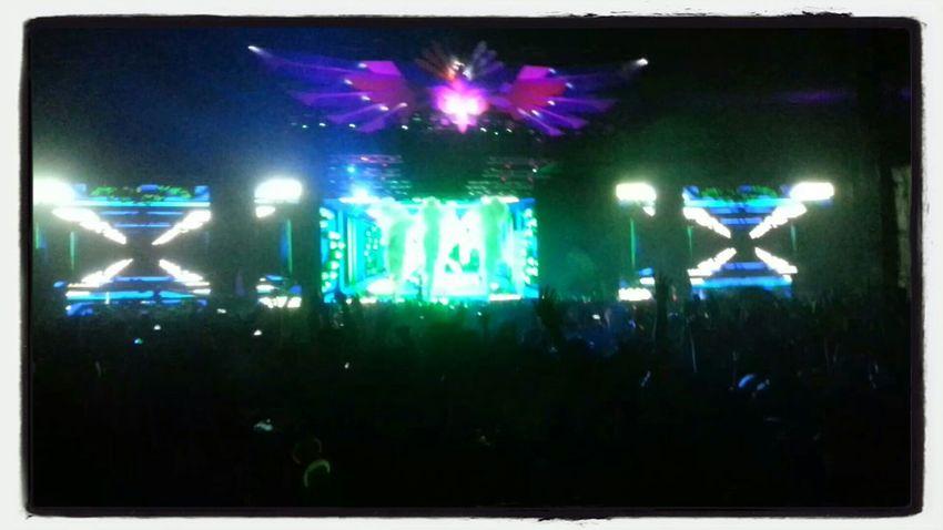 YEEAAAAHHHH!!!! DWP13 Best Night Ever Party Enjoying Life