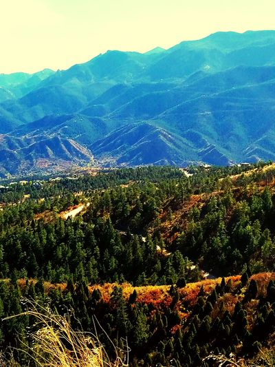 winding road... Beautyeverywhere Peaceful View Skemp Colorado Peaceful Sunset Open Road Outdoors LimitlessLife Autumn Collection Unlimited Potential Trees Collection Mountains Beautiful World Beautiful Scenery Mountain Road Fall Collection Mountain View Mountain Top Picture Perfect. No People Adventure Sunshine ☀
