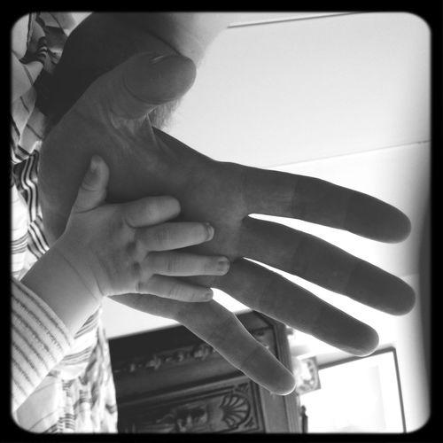 Babyhands Blackandwhite History Identity 7 month old