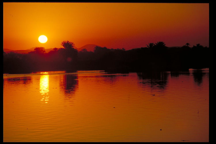 Nile sunset - Luxor, Egypt Beauty In Nature Lake Luxor,Egypt Moon Nature Nile Sunset No People Orange Color Outdoors Reflection River Nile Luxor, Egypt Scenics Silhouette Sky Sun Sunset Tranquil Scene Tranquility Tree Water