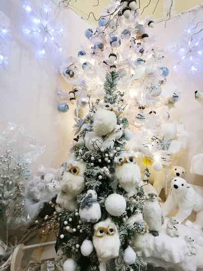 Backgrounds No People Indoors  Day Decorating Owllove Christmas Market Christmastime Christmas Decoration Huawei P9 Photos Arts Culture And Entertainment