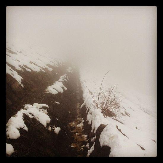 Iran Tehran Tehranpic Tochal shirpala cloud wolke natur nebel fog mountain berg bergsteigen hiking climbing relax ruhe silence schweigen ایران توچال کوه کوهستان کوهنوردی آرامش سکوت