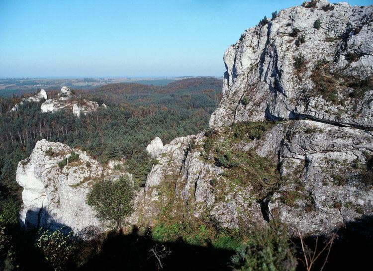 Autumn Forest Forest In Mountain Jura Jura Krakowsko Czestochowska Landscape Limestone Limestone Rocks Rock Rock Formation View From The Top