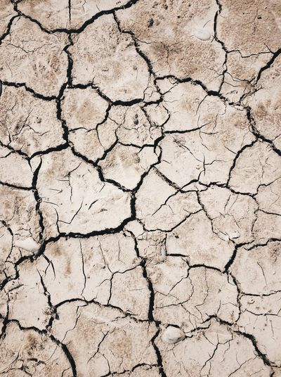 Dried out river bed No People Full Frame Drought Cracked Arid Climate Mud Dirt Environmental Issues Land Dry Extreme Terrain Environment Barren Global Warming Weather Environmental Damage Landscape Backgrounds Bad Condition Textured  Clay