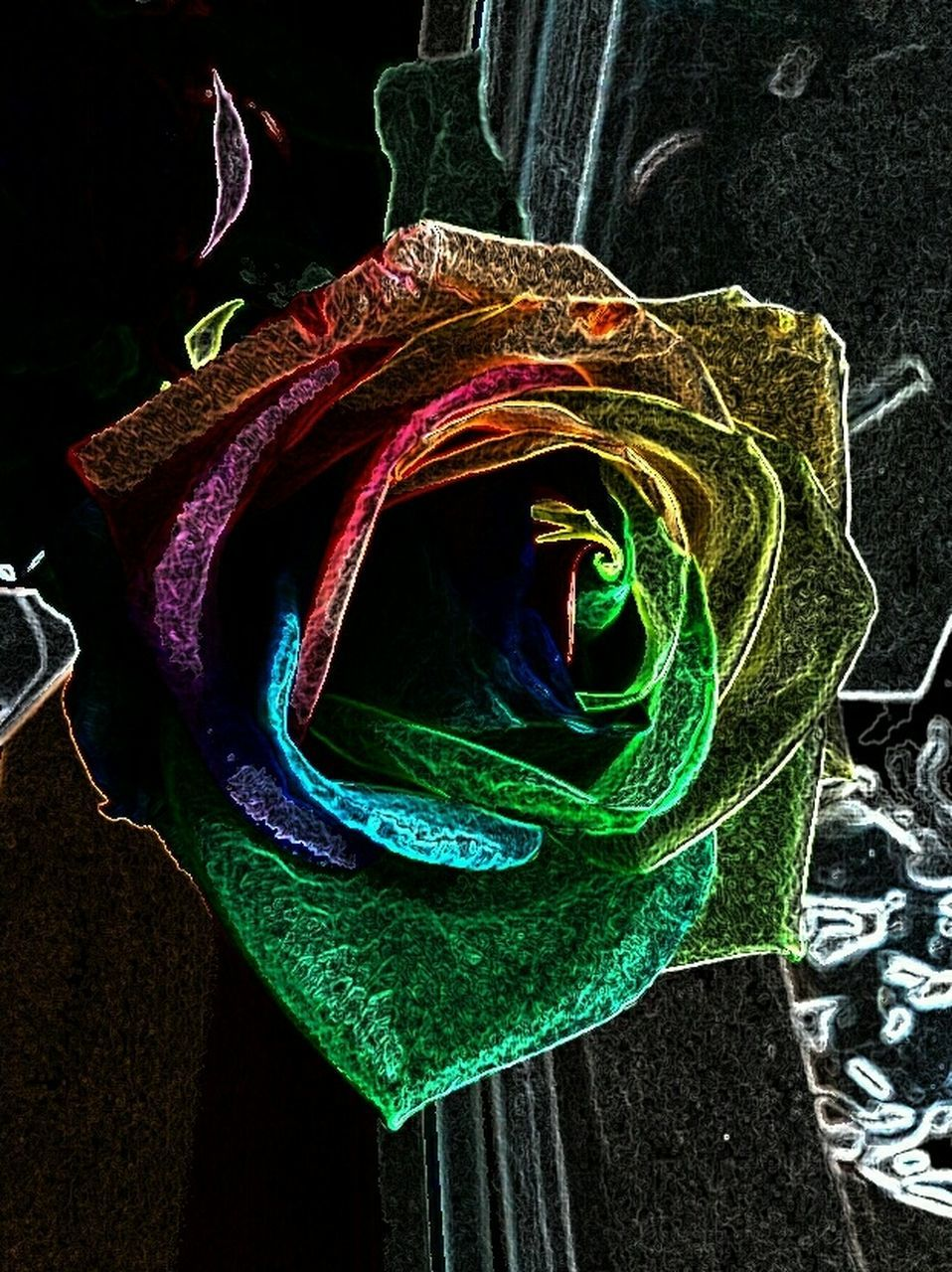 multi colored, no people, indoors, black background, close-up, day