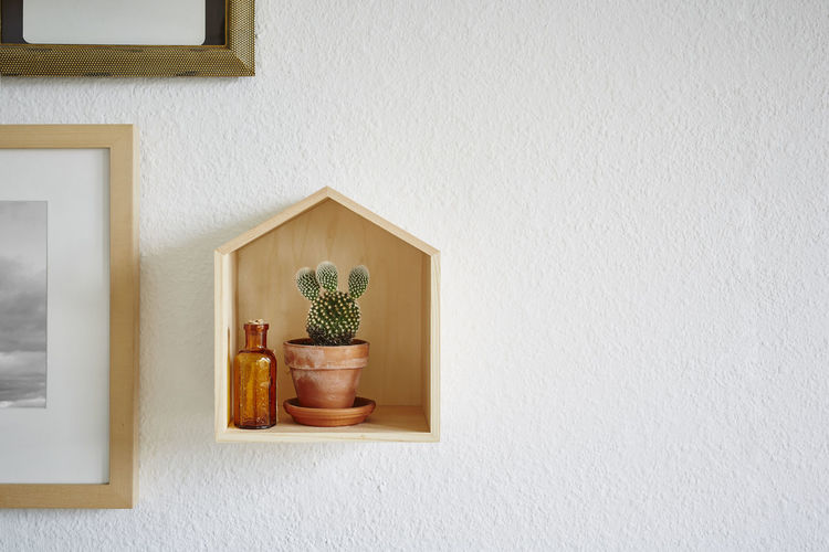 Wall - Building Feature Potted Plant Indoors  No People Built Structure Plant Shelf Home Interior Architecture Decoration Container Wood - Material Picture Frame Frame Still Life Arrangement Day Wall Nature Copy Space Houseplant