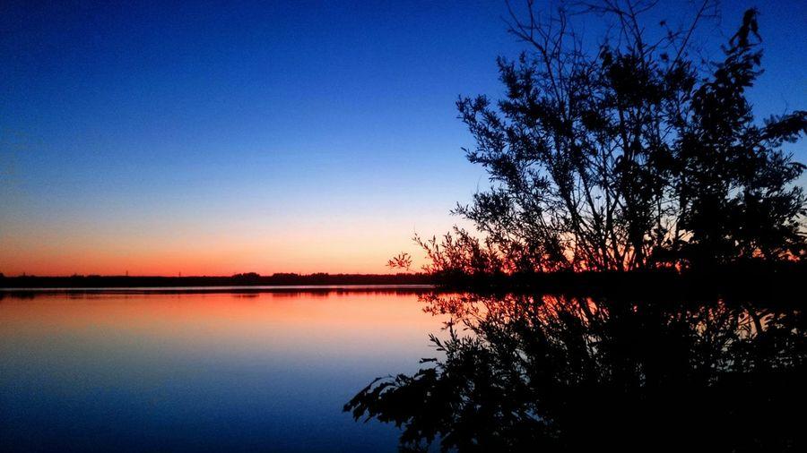 Perfect reflection Sunset Reflection Nature Water Beauty In Nature Blue Orange Color Scenics No People Pogoria3 Pogoria DąbrowaGórnicza Polska Zagłębie Sunset_collection Sunsets Orange Sky Sunset Tree Black Blue Orange Dąbrowa Górnicza