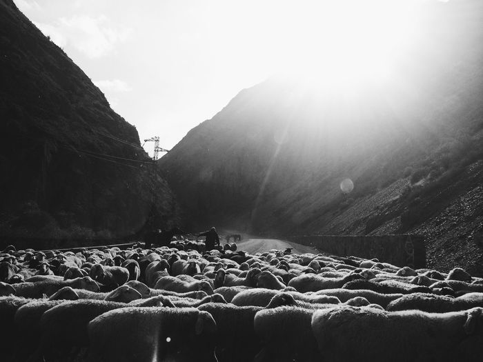 On the way Kyrgyzstan ASIA Nature First Eyeem Photo The Street Photographer - 2016 EyeEm Awards
