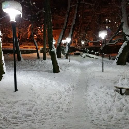 Bursa Bursakarmanzarası Bursavekar Bursakar Snowfall Snow Snowynight Snowtrees Pınarbaşıparkı