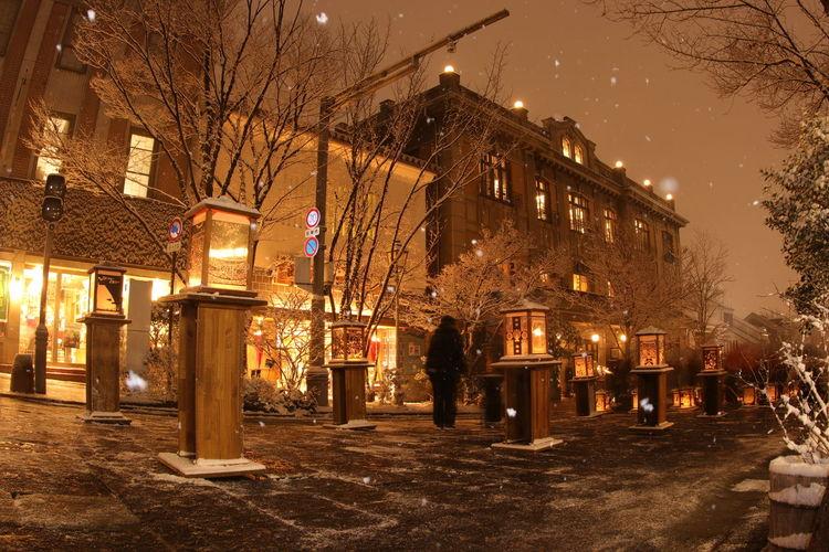 カメラが凍りはじめた夜なのに❄なんだか暖かく見える街並み😆一番手前がオイラの切り絵🙌 City 善光寺 (zenko-ji Temple) 長野灯明まつり 一目惚れんず Illuminated Bar - Drink Establishment