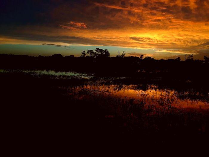 Tree Water Sunset Lake Backgrounds Reflection Sky Landscape Cloud - Sky The Traveler - 2018 EyeEm Awards The Great Outdoors - 2018 EyeEm Awards