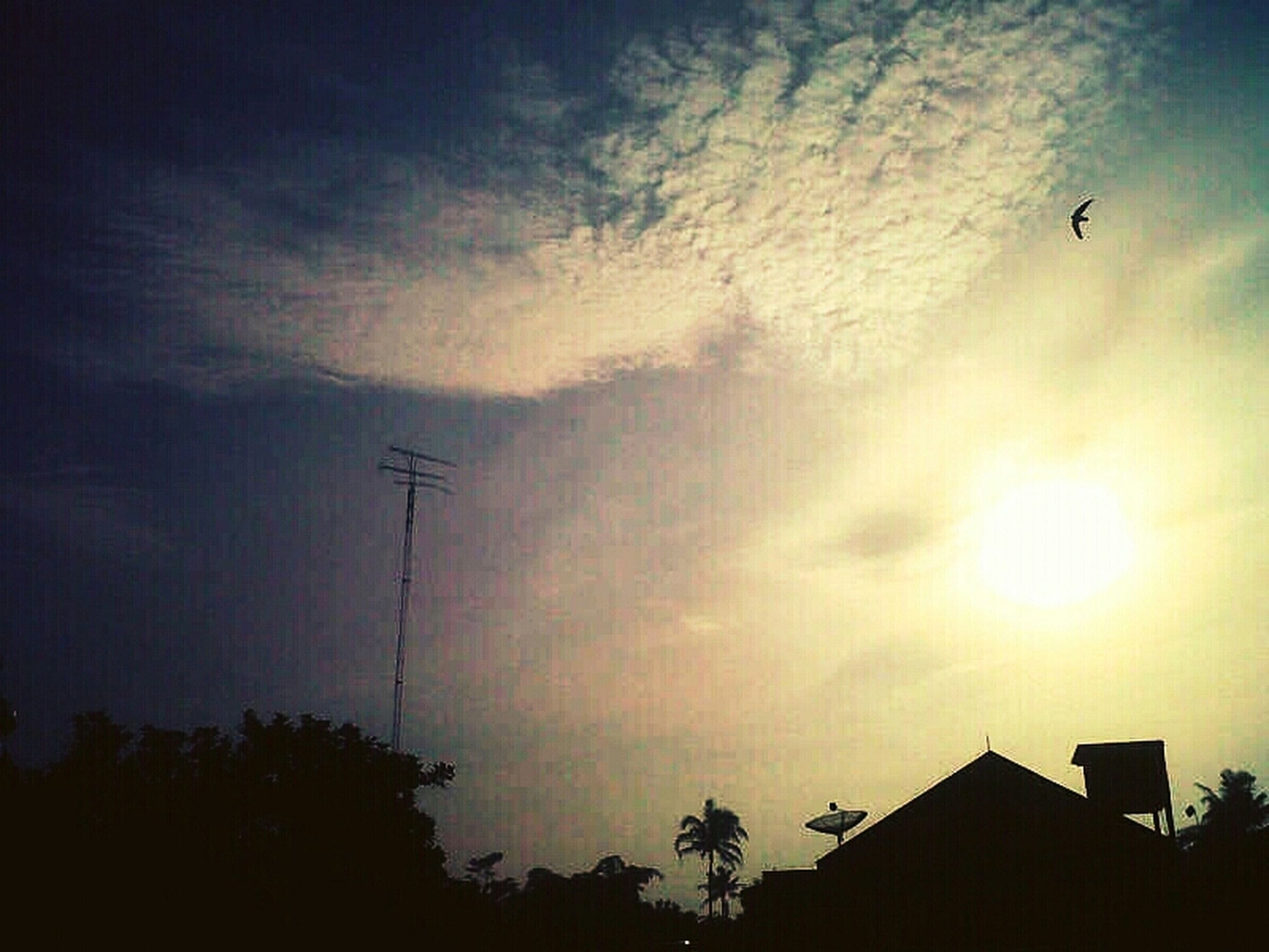 silhouette, sunset, low angle view, building exterior, flying, sky, architecture, built structure, bird, cloud - sky, beauty in nature, nature, scenics, house, tree, high section, orange color, dusk, cloud, outdoors
