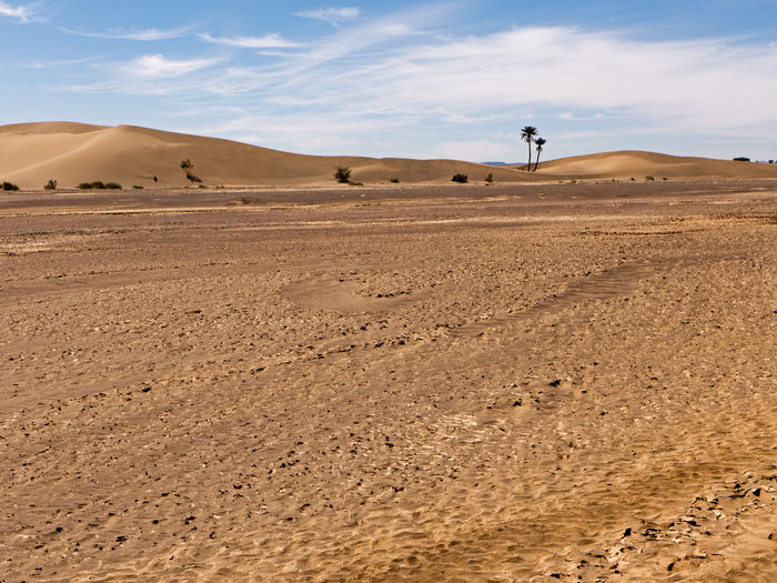The Sahara desert in the south of Morocco near Tafraout. Land Landscape Climate Scenics - Nature Desert Environment Arid Climate Sky Sand Beauty In Nature Non-urban Scene Nature Tranquil Scene Tranquility Outdoors Morocco Sahara Dry Hot Africa Trekking Hiking Sand Dune Extreme Terrain