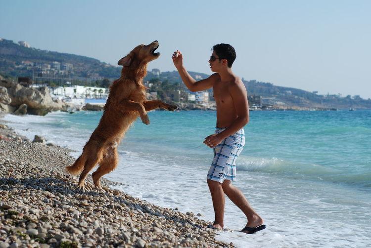 Shirtless man feeding dog at beach against sky