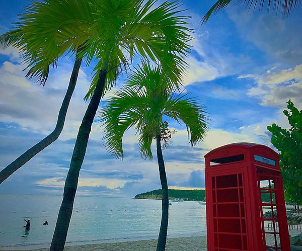 EyeEmNewHere Eyeembeachlover Tree Cloud - Sky Telephone Booth Telephone Pay Phone Sky Palm Tree Red Day Outdoors Communication No People Water Beauty In Nature Sea Nature Building Exterior JeanneRotaMatthews EyeEm Best Shots EyeEmCaribbean Travel Destinations Lifestyles Vacations