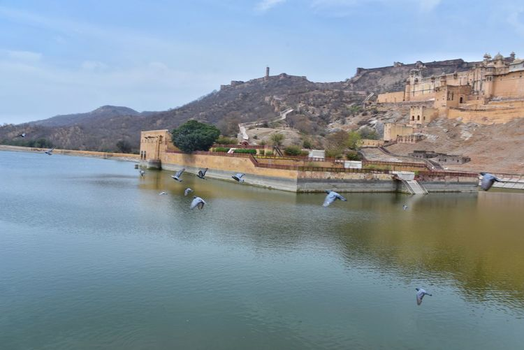 If you keep your cool, you will get everything - ✍️Elliot Erwit✍️Water Mountain No People Mountain Range Outdoors Lake Sky Day Amer Fort Amer Fort Jaipur Water Water Reflections Jaigrah Fort Amer Palace Places You Must To See Place To Visit In Jaipur Historical Building Urban Landscape Travelling Building Travel Destinations Pegion Flying Over Water Bird Bird Photography Birds Adapted To The City Long Goodbye The Secret Spaces Lost In The Landscape