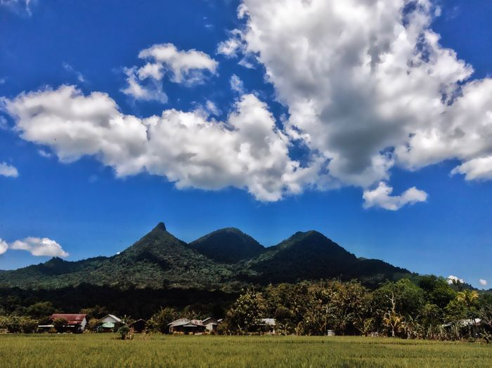 The View Cloud - Sky Sky Mountain Plant Landscape Beauty In Nature Nature Scenics - Nature Land Tree Environment Tranquil Scene Field Tranquility No People Day Mountain Range Blue Rural Scene Sunlight