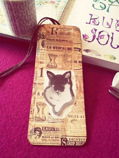 my new individual bookmark ;) Scrapbooking Katzenliebe Cat♡ Bulletjournal Bookmark DIY Text Indoors  No People High Angle View Close-up Pets Animal Themes