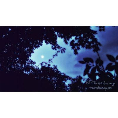 """""""Goodnight Moon"""" 🌔 August 2015 ☮ www.theartofanimage.com NY Newyork Newamsterdam Southshore eastend moon moonlight labellaluna goodnight goodnightmoon sky romantic longisland suffolkcounty summer philosophy meditation poetry thriftstorephilosopher august shivaree picoftheday photography art artist artsy bestoftheday instagood theartofanimage """"...There's a nail in the door And there's glass on the lawn Tacks on the floor And the TV is on And I always sleep with my guns When you're gone There's a blade by the bed And a phone in my hand A dog on the floor And a knife on the nightstand When I'm all alone the dreaming stops And I just can't stand What should I do; Little Baby What if the lights go out and maybe And then the wind just starts to moan Outside the door she followed me home Now Goodnight Moon I want the Sun If it's not here soon I might be done No it won't be too soon 'til I say Goodnight Moon..."""" 🌔 - Shivaree ☮"""