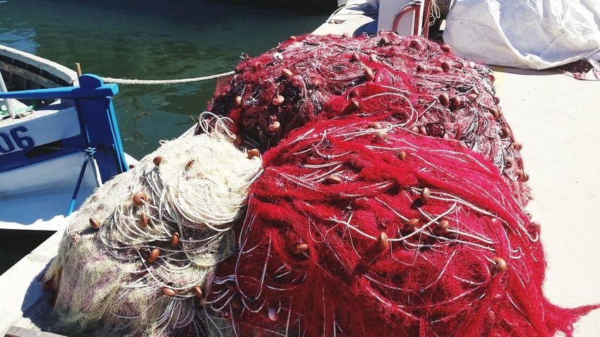 Sardegna la gente di mare fisher Nautical Vessel Boat Nature Harbor Water Tranquil Scene Atmosphere
