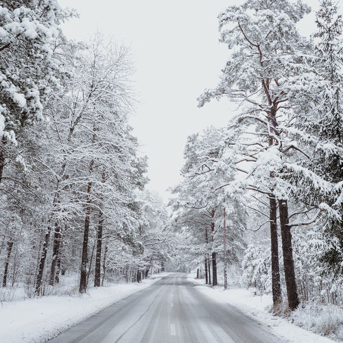 Road amidst snow covered trees against sky