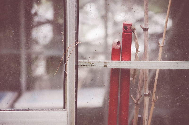 Red tools and sticks seen through glass of greenhouse