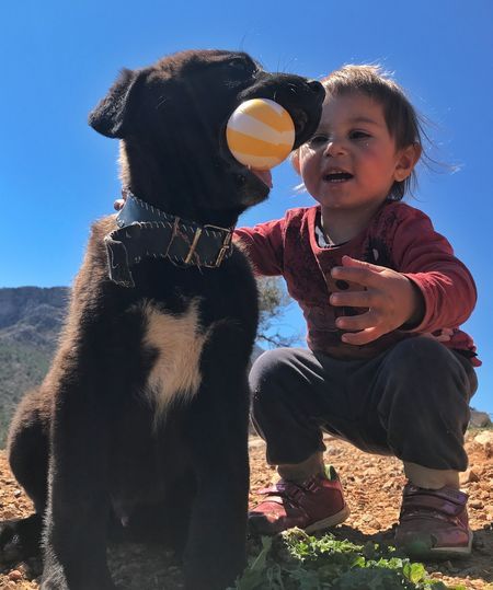 dog child and play Child Childhood Leisure Activity Females Males  Sunlight Real People Sky Nature Lifestyles Boys Women Men Day Casual Clothing Girls One Person Outdoors Innocence