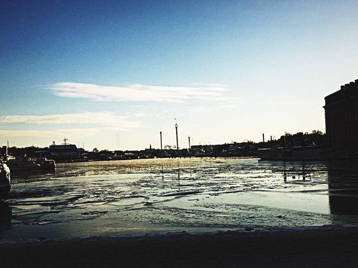 Stockholm Cold