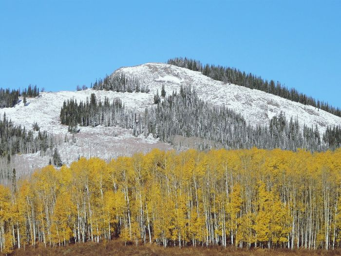 Photo taken in Steamboat Springs, United States