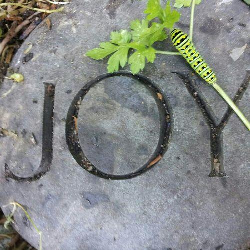 enjoying what nature offers Enjoying Nature Joy Natures Offering Nature
