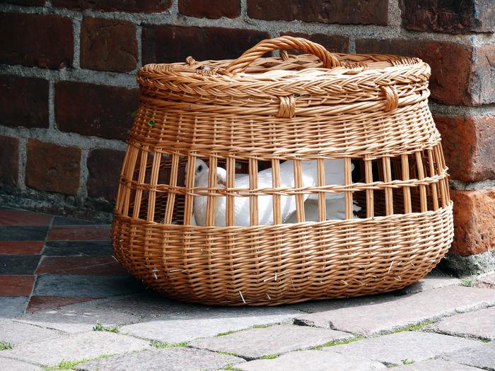 Doves in wicker basket against brick wall