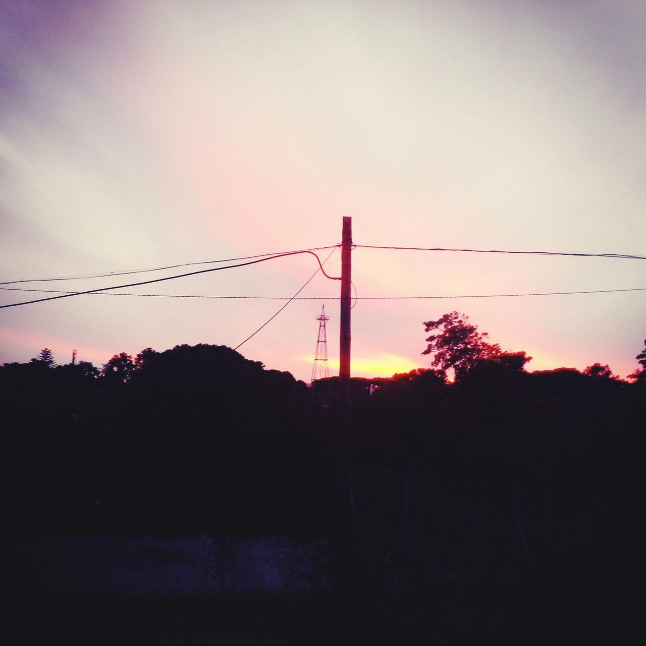 sunset, cable, silhouette, connection, electricity, tree, nature, power line, no people, sky, electricity pylon, power supply, outdoors, beauty in nature, fuel and power generation, technology, landscape, growth, day