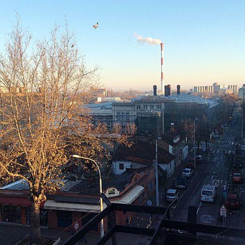 Belgrade City Sunny Day Landscape