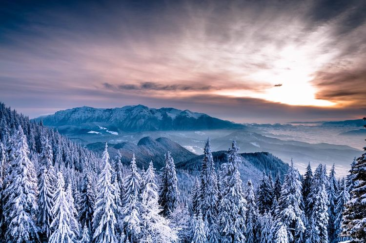 EyeEm Selects Mountain Cloud - Sky Snow Nature Sunset Mountain Range Beauty In Nature Scenics Cold Temperature Landscape No People Tree Sky Outdoors Winter Day EyeEmNewHere
