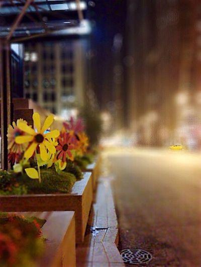 Chicago Mobimag10 NEM GoodKarma Cityscapes