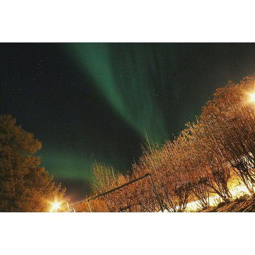 NorthernLights Lapland Finland Landscape