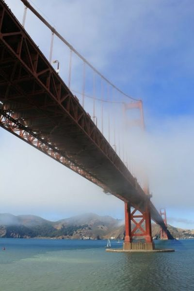 Golden gate bridge in San Francisco Bay fog Fog Bridge Golden Gate Bridge San Francisco California USA Trip Férias Vacations Bay Area