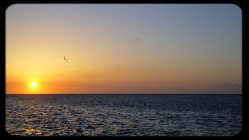 Sunsets Relaxing Enjoying Life