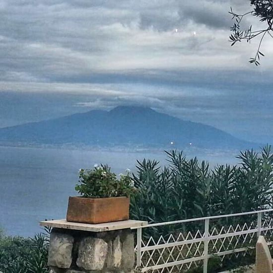 Tree Sea Scenics Growth Nature Water No People Outdoors Cloud - Sky Day Beauty In Nature Sky Sorrento, Italia