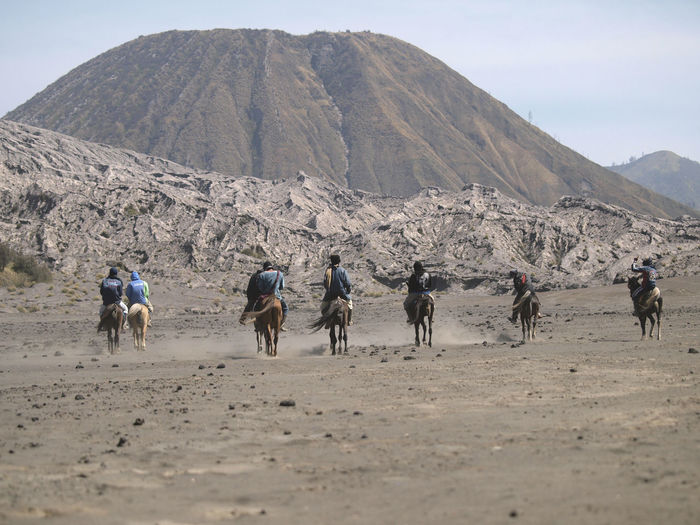 Horse Rider in Mount Bromo. Mount Bromo (Indonesian: Gunung Bromo), is an active volcano and part of the Tengger massif, in East Java, Indonesia. At 2,329 metres (7,641 ft) it is not the highest peak of the massif, but is the most well known. The massif area is one of the most visited tourist attractions in East Java, Indonesia. Desert Horses INDONESIA Large Group Of Animals Nature Travel Photography Travelling Vacations Bluesky Bromo Color Image Day Dust Hill Horseback Riding Landscape Large Group Of People Light And Shadow Outdoors Scenics Sky Togetherness Tourism Travel Destinations Uniqueness