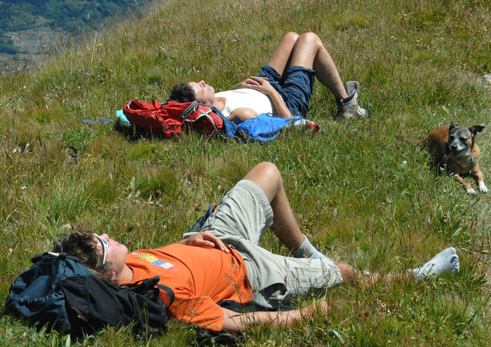 after a walk in the mountains it is good to sunbathe on a meadow and breathe the air of the Alps Italy Adult Adults Only Day Dog Friendship Full Length Grass Leisure Activity Low Section Lying Down Lying On Back Meadow Men Mountains Mountains And Valleys Nature Outdoors People Relaxation Resting Sleeping Sunbathe Sunbathes Togetherness