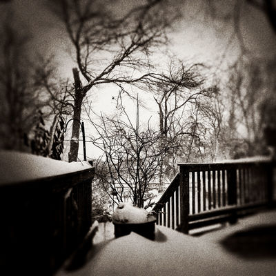 Blizzard 2016 Snow IPhoneography 366dailies 366 Weather Blackandwhite Check This Out Cold Hello World Taking Photos Blizzard2016