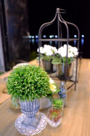 Table Freshness Flower Plant No People Indoors  Green Color Nature Fragility Day Flower Head Close-up STAND Dinner Time Tabledecoration Tabledesign Vintage Style Flowers, Nature And Beauty Flowerdecor Cozy At Home