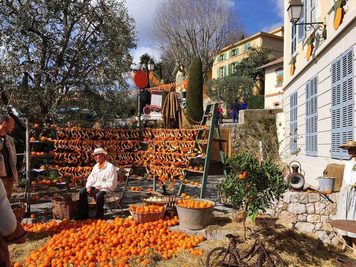 Fete D'Oranger 2016 Fete Orange Festival Sign Of Spring Fruit Handicraft Celebration Traditional AlpesMaritimes