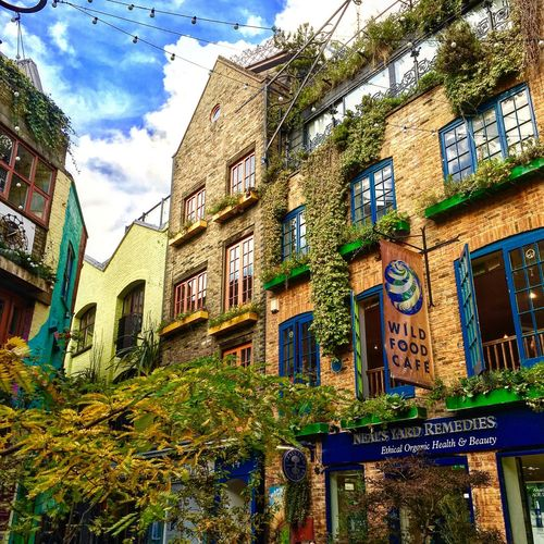 Neal's Yard, London, UK Building Exterior Architecture Built Structure Outdoors City Low Angle View Sky Multi Colored No People Ivy Road Sign Day Horizontal Neal's Yard Coventgarden Colors Colour Of Life Beautiful Urbanphotography Oasis Urban Exploration Urban Oasis Beautiful Day London Lifestyle Adapted To The City Miles Away Been There. Stories From The City