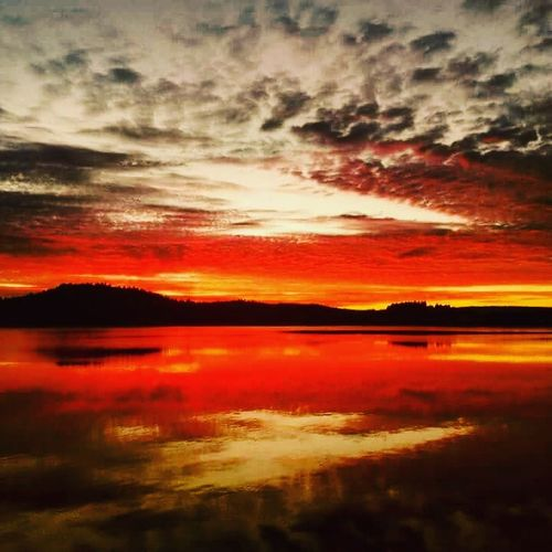 nofilternoedit Sunset Sunset_collection Reflection Beauty In Nature Orange Color Dramatic Sky Scenics Cloud - Sky Water Lake Landscape Nature Outdoors Sky Day Summer2017 NicklasEdlander Peaceful View No People Nature Love Playa Lovely Weather Forest Dimension EyeEmNewHere