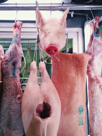 Pig Butcher Butchery Butcher Shop Dead Animal Pork Food Vitrine Window Shopping Pig Head HEAD