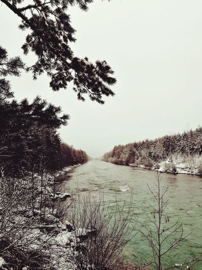 my River River Riverside River View Snow ❄ Snow Covered Blackandwhite Photography Austria Gail Endless Endlessness Winter Outdoors No People Day Sky Nature Rural Scene Tree Beauty In Nature